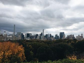 Met rooftop view